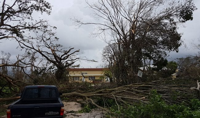 More News and Videos from Puerto Rico