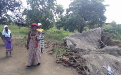 Givemore's Pictorial Update from Malawi