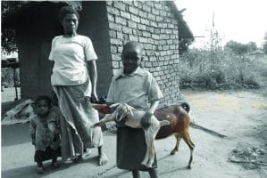 Project #13: Goat Project for HIV/AIDS Patients in Malawi