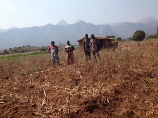 Church Property in Muslim Areas – Malawi